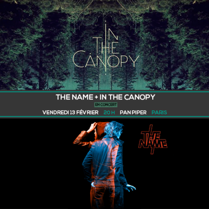affiche concert The Name + In the canopy