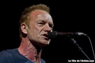 Sting (1)