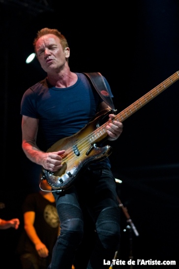 Sting (10)