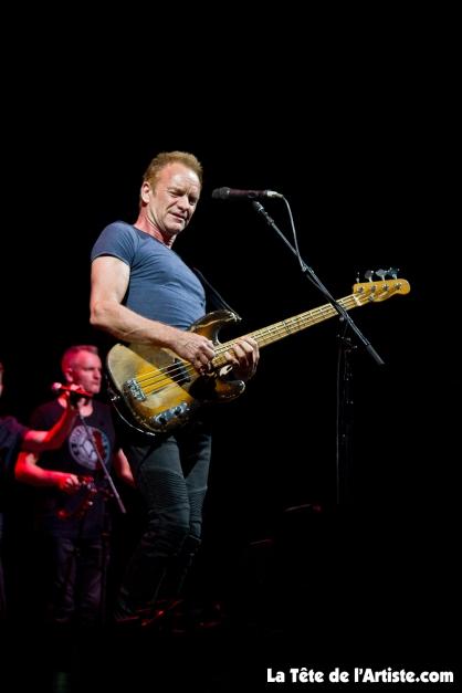 Sting (3)