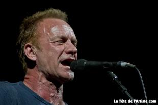 Sting (4)