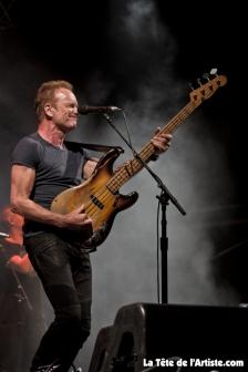 Sting (8)