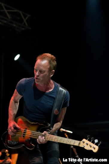 Sting (9)